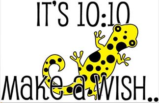 The It's 10:10 Make a Wish, official company logo, above, has an icon of a gecko because Brooke had a pet gecko who she adored and loved. T-shirt's can be purchased, with the logo on it, for donations.