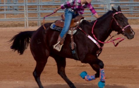 Eighth grade barrel racer Mackenzie Miller strives to do her best in each rodeo