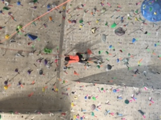 Courtesy of Carey Tavano Sofia Tavano climbs a rock wall at the Red Rock Climbing Center in Rock Climbing Club, an unusual activity.